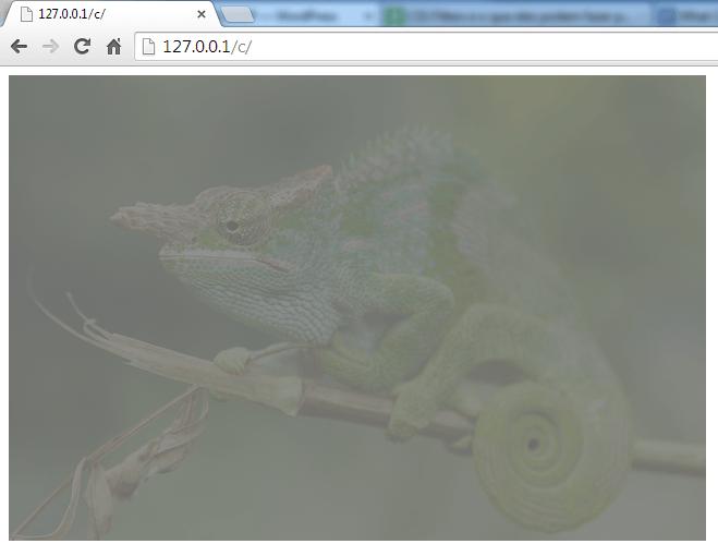 CSS filter 9